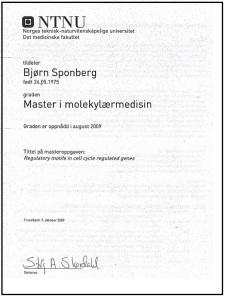 certificate_NTNU_
